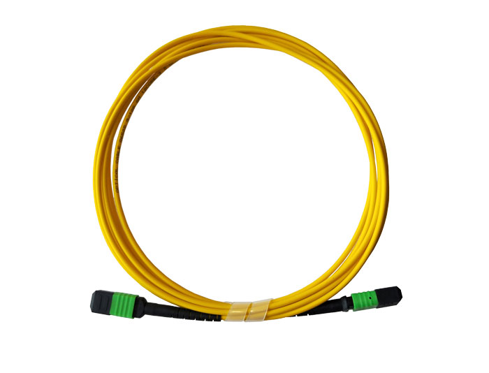 MPO to MPO Fiber Optic Trunk Cable, SM, Low Smoke Zero Halogen (LSZH) Rated, TSB-307A
