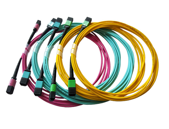 MPO to MPO, OM4 Multimode Fiber Trunk Cable, Low Smoke Zero Halogen (LSZH) Rated TSB-307C