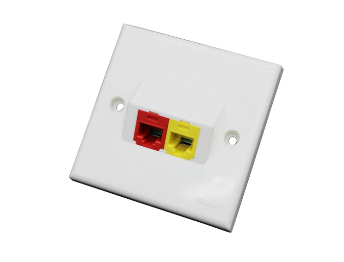 86x86 Type, Double Port, Angled CAT5 RJ45 Faceplate TSF-301F